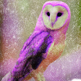 Bruce Nutting - Rare Pink Owl in a Snow Storm