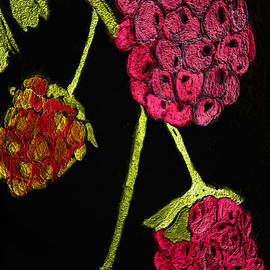Paula Ayers - Raspberry Fabric