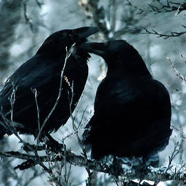 Colette V Hera  Guggenheim  - Raven Love Chat
