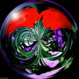Brenda  Spittle - Tulips Under Glass