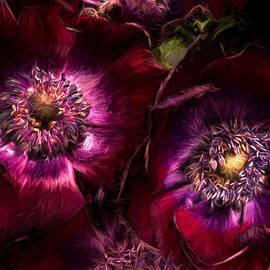 Ann Garrett - Red Anemones A Digital Painting