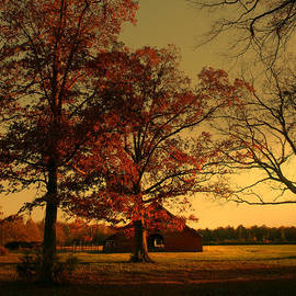 Nina Fosdick - Red Barn and Red Oaks in Autumn