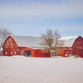 LeeAnn McLaneGoetz McLaneGoetzStudioLLCcom - Red Barn Jeddo Michigan
