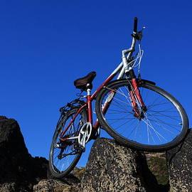 Aidan Moran - Red Bicycle