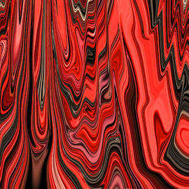 Minding My  Visions by Adri and Ray - Red Black and White Abstract Design Pattern Curve and Zig Zag