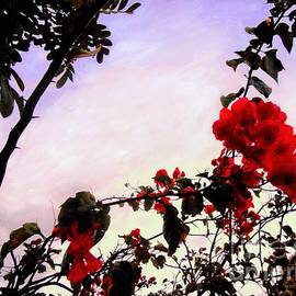 Debb Starr - Red Blossoms and Silhouettes