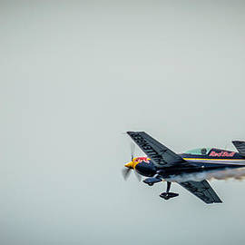 Dejan Stojakovic - Red Bull Airplane