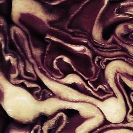 Edward Paul - Bodies In Motion Red Cabbage