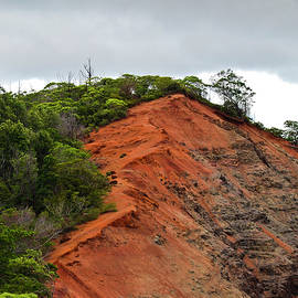 Christi Kraft - Red Cliff at Waimea
