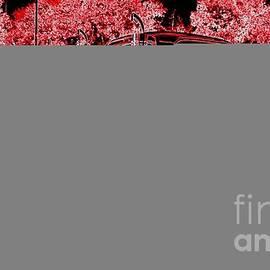 Bobbee Rickard - Red Expression