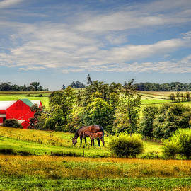 Mary Timman - Red Farm