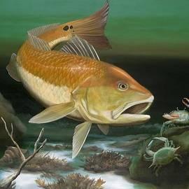 Michael Alexander - Red Fish