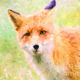 Janice Rae Pariza - Red Fox