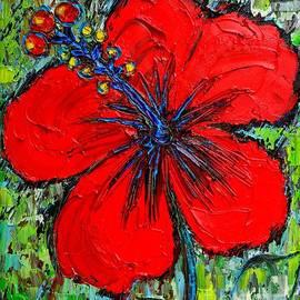 Ana Maria Edulescu - Red Hibiscus