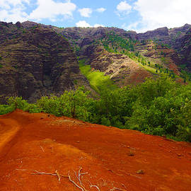 Kevin Smith - Red Hill Road Waimea Canyon