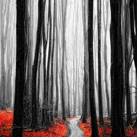 Neil Hemsley - Red Leafs IV