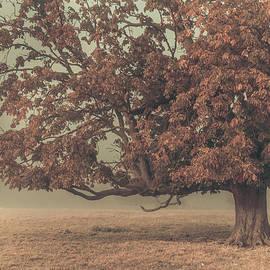 Chris Fletcher - Red mist