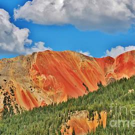 Janice Rae Pariza - Red Mountain Colorado