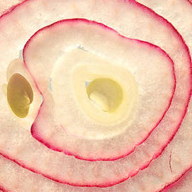 Paul Ge - Red onion slice miniature art