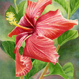 Sharon Freeman - Red Orange Hibiscus with Background