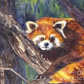 Carol Wisniewski - Red Panda