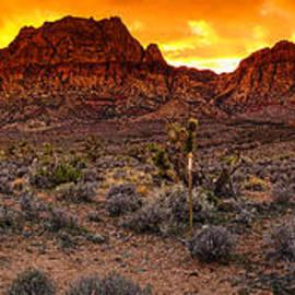Silvio Ligutti - Red Rock Canyon Las Vegas Nevada Fenced Wonder