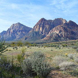 Glenn McCarthy Art and Photography - Red Rock Canyon National Conservation Area