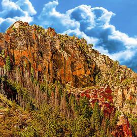 Bob and Nadine Johnston - Red Rock Country Sedona Arizona