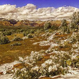 Bob and Nadine Johnston - Red Rock Secret Mountain Wilderness Sedona Arizona