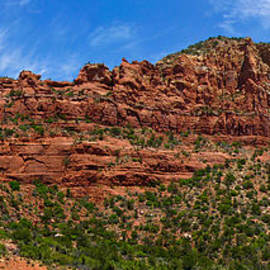 Amy Cicconi - Red Rocks of Sedona