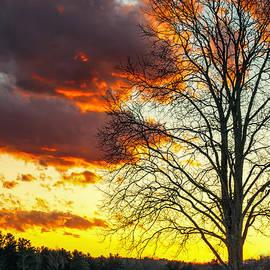 Scott Thorp - Red Sky at Night