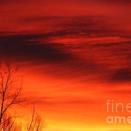 Steven Parker - Red Sunrise