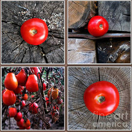 Daliana Pacuraru - Red Tomatoes texture