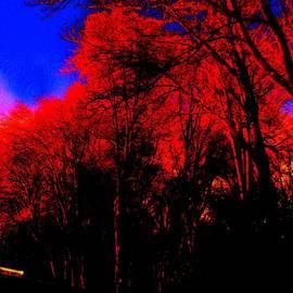 Allen n Lehman - Red Trees