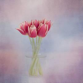 Kim Hojnacki - Red Tulip Still Life