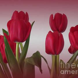 Ann Horn - Red Tulips