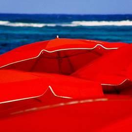 Karen Wiles - Red Umbrellas