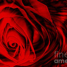 M and L Creations - Red with Black Wind Swept Rose
