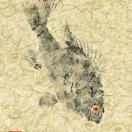 Matt Monahan - Redear Sunfish