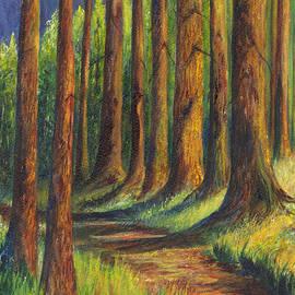 Carol Wisniewski -  Jedediah Smith Redwoods State Park