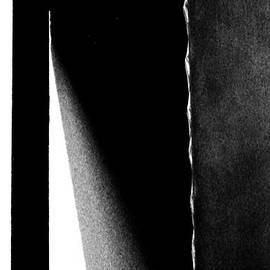 Newel Hunter - Reflected Dawn