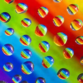 Adrian Campfield - Reflecting the Rainbow