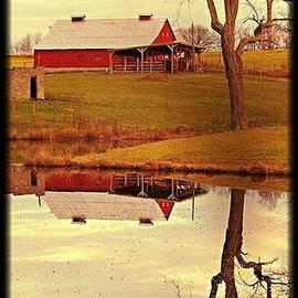 Beverly Canterbury - Reflecting Winter