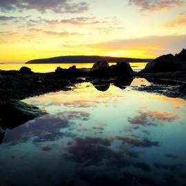 Christopher Fridley - Reflection