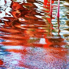 Chuck  Hicks - Reflection Of A Flamingo 2