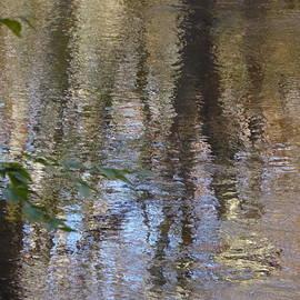 Nili Tochner - Reflections 20
