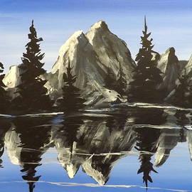 Darren Robinson - Reflections
