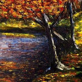 Kevin Richard - Reflections of a Maple