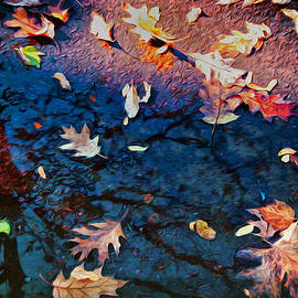 Sandra Selle Rodriguez - Reflections of Fall