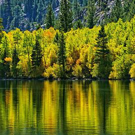 Lynn Bauer - Golden Reflections on Silver Lake